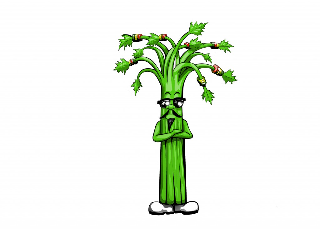 17 Celery copy